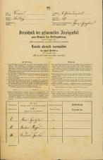 Popis prebivalstva 31. 12. 1869<br />Ljubljana<br />Svetega Petra predmestje 29<br />Population census 31 December 1869