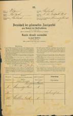 Popis prebivalstva 31. 12. 1869<br />Ljubljana<br />Svetega Petra predmestje 3<br />Population census 31 December 1869