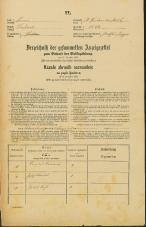 Popis prebivalstva 31. 12. 1869<br />Ljubljana<br />Svetega Petra predmestje 32<br />Population census 31 December 1869