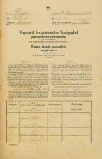 Popis prebivalstva 31. 12. 1869<br />Ljubljana<br />Svetega Petra predmestje 33<br />Population census 31 December 1869