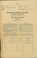 Popis prebivalstva 31. 12. 1869<br />Ljubljana<br />Svetega Petra predmestje 38<br />Population census 31 December 1869