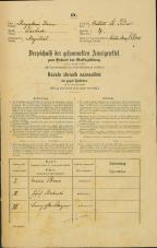 Popis prebivalstva 31. 12. 1869<br />Ljubljana<br />Svetega Petra predmestje 4<br />Population census 31 December 1869