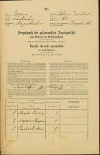 Popis prebivalstva 31. 12. 1869<br />Ljubljana<br />Svetega Petra predmestje 41<br />Population census 31 December 1869