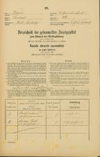 Popis prebivalstva 31. 12. 1869<br />Ljubljana<br />Svetega Petra predmestje 42<br />Population census 31 December 1869
