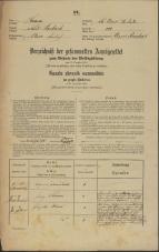 Popis prebivalstva 31. 12. 1869<br />Ljubljana<br />Svetega Petra predmestje 100<br />Population census 31 December 1869