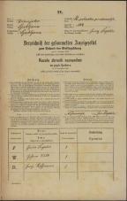 Popis prebivalstva 31. 12. 1869<br />Ljubljana<br />Svetega Petra predmestje 104<br />Population census 31 December 1869