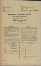 Popis prebivalstva 31. 12. 1869<br />Ljubljana<br />Svetega Petra predmestje 105<br />Population census 31 December 1869