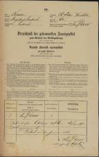 Popis prebivalstva 31. 12. 1869<br />Ljubljana<br />Svetega Petra predmestje 62<br />Population census 31 December 1869