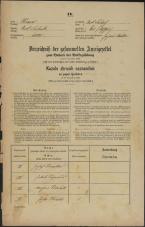 Popis prebivalstva 31. 12. 1869<br />Ljubljana<br />Svetega Petra predmestje 65<br />Population census 31 December 1869
