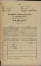 Popis prebivalstva 31. 12. 1869<br />Ljubljana<br />Svetega Petra predmestje 67<br />Population census 31 December 1869