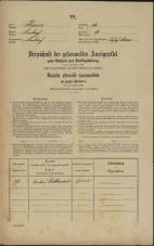 Popis prebivalstva 31. 12. 1869<br />Ljubljana<br />Svetega Petra predmestje 70<br />Population census 31 December 1869
