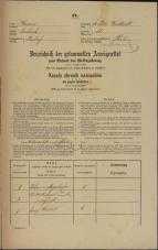 Popis prebivalstva 31. 12. 1869<br />Ljubljana<br />Svetega Petra predmestje 81<br />Population census 31 December 1869