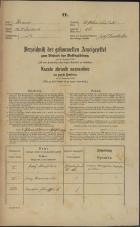 Popis prebivalstva 31. 12. 1869<br />Ljubljana<br />Svetega Petra predmestje 86<br />Population census 31 December 1869