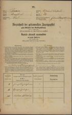 Popis prebivalstva 31. 12. 1869<br />Ljubljana<br />Svetega Petra predmestje 87<br />Population census 31 December 1869
