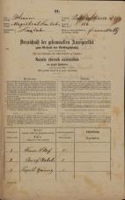 Popis prebivalstva 31. 12. 1869<br />Ljubljana<br />Svetega Petra predmestje 113<br />Population census 31 December 1869