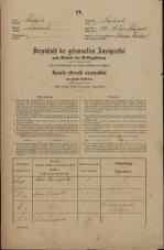 Popis prebivalstva 31. 12. 1869<br />Ljubljana<br />Svetega Petra predmestje 114<br />Population census 31 December 1869