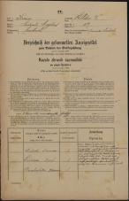 Popis prebivalstva 31. 12. 1869<br />Ljubljana<br />Svetega Petra predmestje 117<br />Population census 31 December 1869