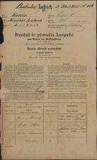 Popis prebivalstva 31. 12. 1869<br />Ljubljana<br />Svetega Petra predmestje 118<br />Population census 31 December 1869