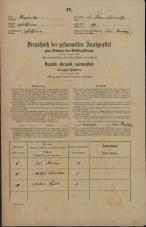 Popis prebivalstva 31. 12. 1869<br />Ljubljana<br />Svetega Petra predmestje 119<br />Population census 31 December 1869