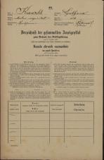 Popis prebivalstva 31. 12. 1869<br />Ljubljana<br />Svetega Petra predmestje 121<br />Population census 31 December 1869
