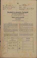 Popis prebivalstva 31. 12. 1869<br />Ljubljana<br />Svetega Petra predmestje 128<br />Population census 31 December 1869