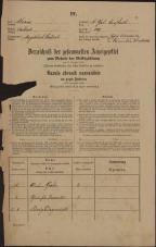 Popis prebivalstva 31. 12. 1869<br />Ljubljana<br />Svetega Petra predmestje 149<br />Population census 31 December 1869