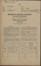 Popis prebivalstva 31. 12. 1869<br />Ljubljana<br />Svetega Petra predmestje 159<br />Population census 31 December 1869