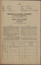 Popis prebivalstva 31. 12. 1869<br />Ljubljana<br />Svetega Petra predmestje 165<br />Population census 31 December 1869