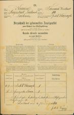 Popis prebivalstva 31. 12. 1869<br />Ljubljana<br />Trnovsko predmestje 10<br />Population census 31 December 1869