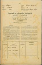 Popis prebivalstva 31. 12. 1869<br />Ljubljana<br />Trnovsko predmestje 15<br />Population census 31 December 1869