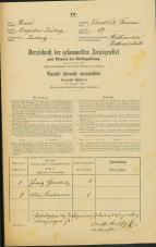 Popis prebivalstva 31. 12. 1869<br />Ljubljana<br />Trnovsko predmestje 17<br />Population census 31 December 1869