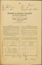 Popis prebivalstva 31. 12. 1869<br />Ljubljana<br />Trnovsko predmestje 19<br />Population census 31 December 1869
