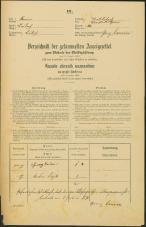 Popis prebivalstva 31. 12. 1869<br />Ljubljana<br />Trnovsko predmestje 20<br />Population census 31 December 1869