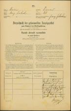 Popis prebivalstva 31. 12. 1869<br />Ljubljana<br />Trnovsko predmestje 25<br />Population census 31 December 1869