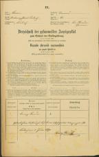 Popis prebivalstva 31. 12. 1869<br />Ljubljana<br />Trnovsko predmestje 61<br />Population census 31 December 1869