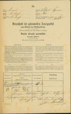 Popis prebivalstva 31. 12. 1869<br />Ljubljana<br />Trnovsko predmestje 65<br />Population census 31 December 1869