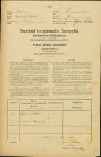 Popis prebivalstva 31. 12. 1869<br />Ljubljana<br />Trnovsko predmestje 7<br />Population census 31 December 1869