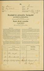 Popis prebivalstva 31. 12. 1869<br />Ljubljana<br />Trnovsko predmestje 71<br />Population census 31 December 1869