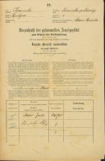 Popis prebivalstva 31. 12. 1869<br />Ljubljana<br />Trnovsko predmestje 8<br />Population census 31 December 1869