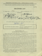 Popis prebivalstva 31. 3. 1931<br />Ljubljana<br />Dermotova ulica 33<br />Population census 31 March 1931