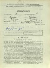 Popis prebivalstva 31. 3. 1931<br />Ljubljana<br />Dunajska cesta 11<br />Population census 31 March 1931