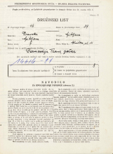 Popis prebivalstva 31. 3. 1931<br />Ljubljana<br />Glinška ulica 11<br />Population census 31 March 1931