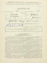 Popis prebivalstva 31. 3. 1931<br />Ljubljana<br />Gradišče 11<br />Population census 31 March 1931