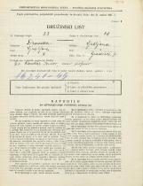 Popis prebivalstva 31. 3. 1931<br />Ljubljana<br />Gradišče 7<br />Population census 31 March 1931