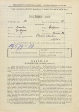 Popis prebivalstva 31. 3. 1931<br />Ljubljana<br />Ilovica 22<br />Population census 31 March 1931