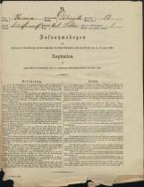 Popis prebivalstva 31. 12. 1869<br />Občina Dobrnič<br />Dolenje Selce 13<br />Population census 31 December 1869<br />Municipality Dobrnič