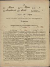 Popis prebivalstva 31. 12. 1869<br />Občina Prečna<br />Boršt 3<br />Population census 31 December 1869<br />Municipality Prečna