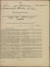 Popis prebivalstva 31. 12. 1869<br />Občina Prečna<br />Bršljin 13<br />Population census 31 December 1869<br />Municipality Prečna