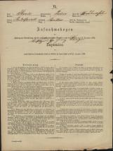 Popis prebivalstva 31. 12. 1869<br />Občina Prečna<br />Bršljin 15<br />Population census 31 December 1869<br />Municipality Prečna