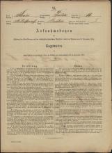 Popis prebivalstva 31. 12. 1869<br />Občina Prečna<br />Bršljin 16<br />Population census 31 December 1869<br />Municipality Prečna
